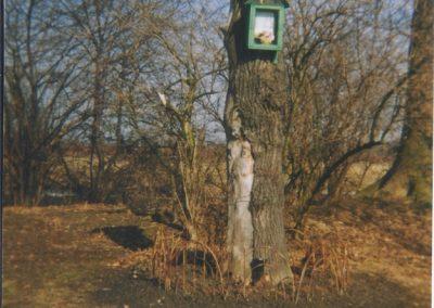 127.Widok kapliczki skrzynkowej z 2001 r. na Grobli w Czarnuchowicach (z pnia dębu wyłania się postać Chrystusa)