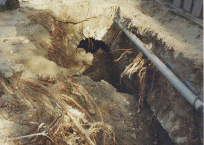 Czy tj. dowód na istnienie legendarnego bieruńskiego tunelu